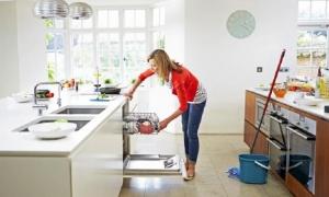 За чистенето и други подобни дивотии