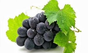 Лечебните свойства на червеното грозде