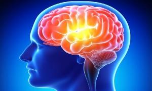 Експресна проверка на паметта